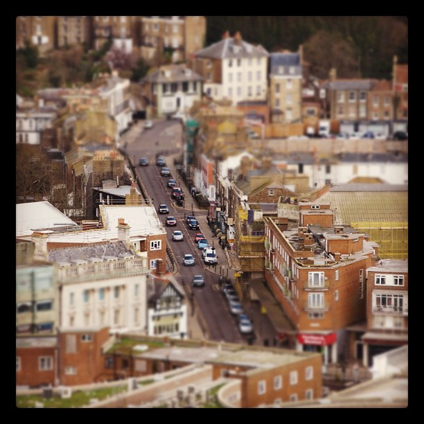 Miniature Dover