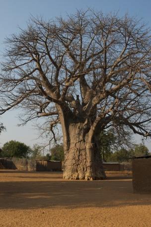 Caprivi strip - Namibia