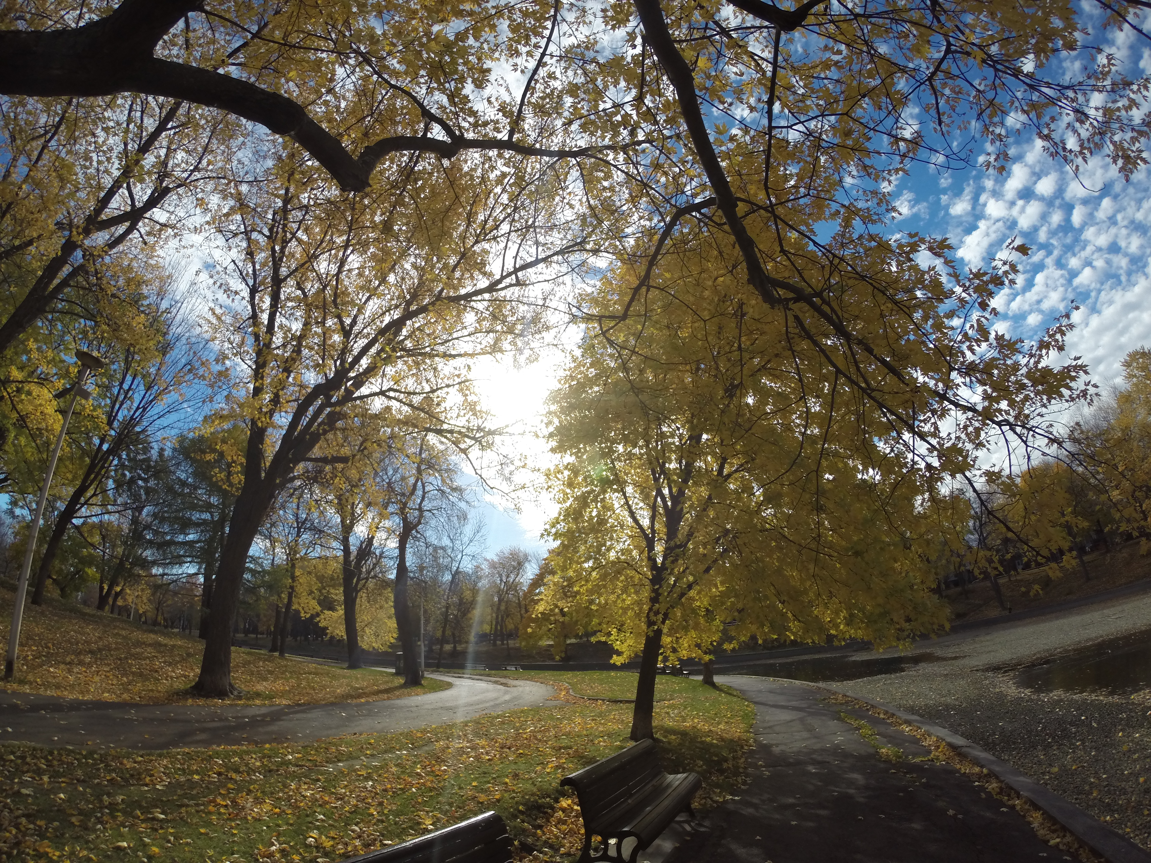 Autumn chill in Parc Lafontaine | My Journey Blog
